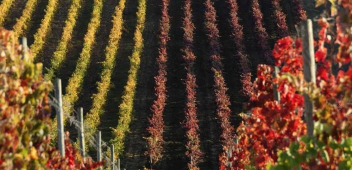Autunno in Puglia: cosa fare e cosa vedere