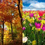 stagioni-in-puglia