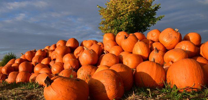 Come si festeggia Halloween in Puglia